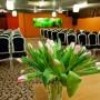 Hotel-U-Pietrzakow-Zielonka-681677
